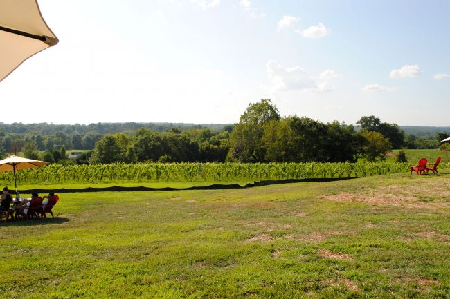 new maryland winery